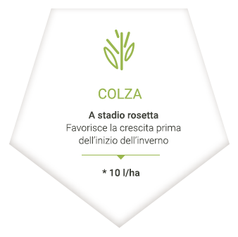 applications_it_colza