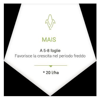applications_it_mais